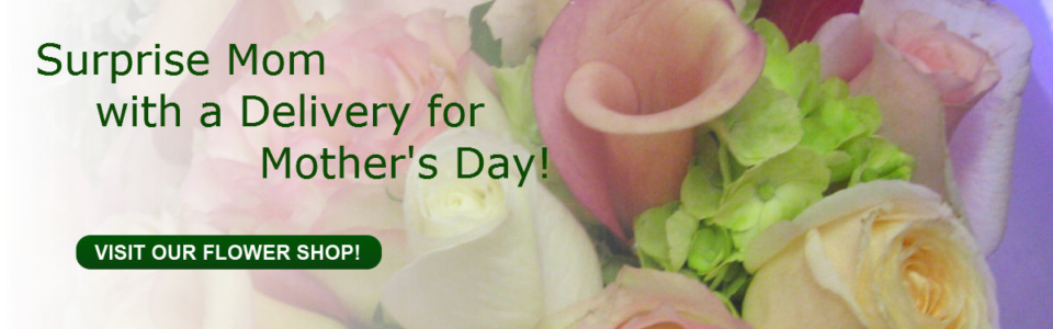 Mother's Day Banner 2