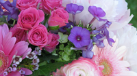 Crystal Lake florist providing fresh flowers for all occasions