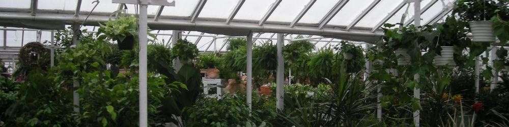 greenhouseslider1